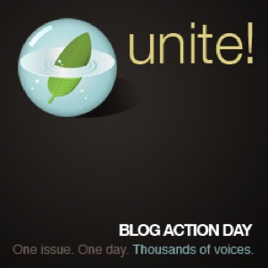 Blog Action Day – How can students help the environment